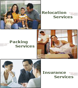 Packing & Unpacking Service